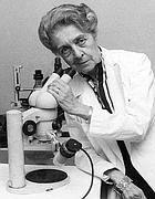 Rita Levi-Montalcini nel suo laboratorio di ricerca